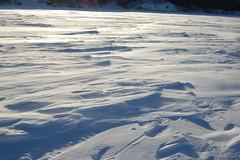 DSC_0035 (Tim Fletcher) Tags: icefishing frozenlake fortquappelle