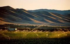 hills of southern San Joaquin County, July 1, 2007