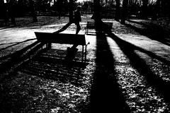 walking in the light (Donato Buccella / sibemolle) Tags: park light blackandwhite bw man milan back movement alone shadows candid milano streetphotography sundaymorning parcosempione monochromia canon400d sibemolle