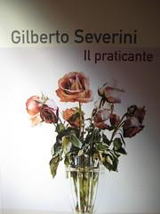 Gilberto Severini, Il praticante, Playground, 2009. Federico Borghi: cop. (part.) 4