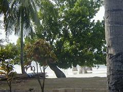 MUROAMI 022 (takemeout) Tags: beach bohol whitesand panglao