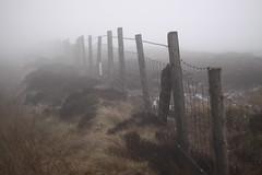 Moors (harry.1967) Tags: uk england mist wet fence britain gb moors damp saddleworth ef50mmf18 saddleworthmoor andrewlee 50d niftyfifty sooc canon50d harry1967 hnff niftyfiftyfriday