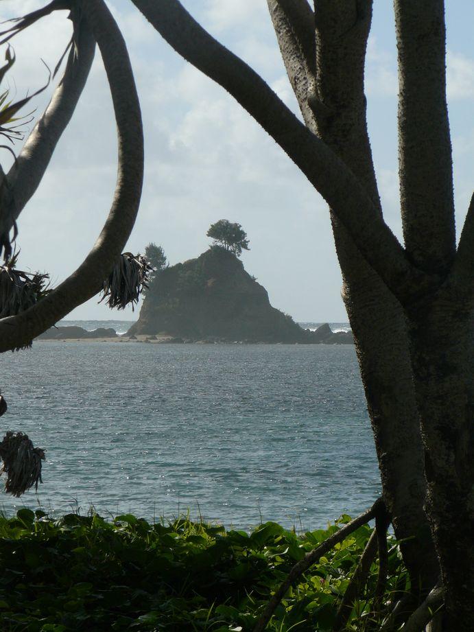 Vanuatu : Ile de Tanna #7 : Baie des tortues , chapeau du Capitaine Cook