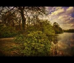 Wentworth lakeside (Steel Steve) Tags: lake wentworth englishcountryside rotherham southyorkshire abigfave anawesomeshot aplusphoto steelsteve vosplusbellesphotos greasborodams