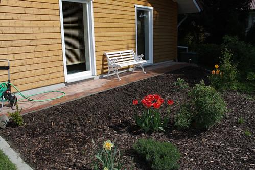 bepflanzungsideen für 8 x 1 m gesucht - seite 1 - gartengestaltung, Garten Ideen