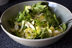 Endive and Celery Salad with Fennel Vinaigrette