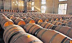 Eurnekian apuesta al negocio del vino