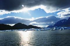 Glacier Gray (wallygrom) Tags: chile winter patagonia ice invierno torresdelpaine iceberg hielo icebergs icesculptures icesculpture puertonatales blueice parquenacionaltorresdelpaine glaciergray chileanpatagonia knudsentours