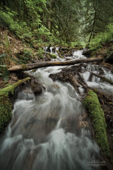 Testing my rubber boots (janusz l) Tags: creek stream bc veil falls valley bridal fraserriver rubberboots provincialpark chilliwack sigma1224 janusz leszczynski 24053 cheamlakewetlands