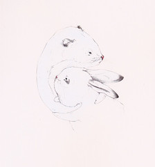 Ermine and Bunny (Sarah McNeil) Tags: white toronto canada rabbit animal pencil painting hug ermine drawing exhibition gouache robber
