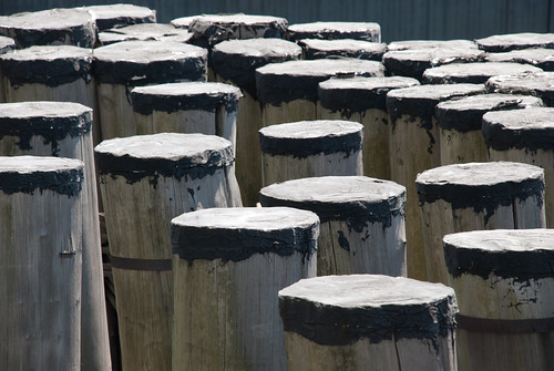Pilings straight up