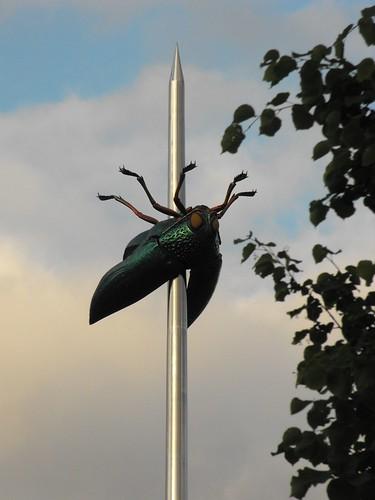 Beetle Needle