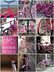 Pink Bicycle Favorites