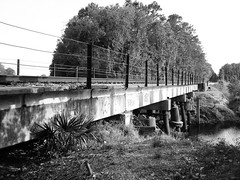 Railroad bridge over Garners Bayou East of US 59, Humble, Texas 0626091822BW (Patrick Feller) Tags: county railroad bridge b blackandwhite bw white black train blackwhite texas w bayou harris humble garners pontist