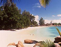 islandr guesthouse anse kerlan Praslin seychelles (SeyEasy) Tags: seychelles seychelle praslinseychelles maheseychelles voyagedenocesseychelles ladigueseychelles vacancesseychelles croisiereseychelles hotelseychelles bateauseychelles bonsplansseychelles locationseychelles seychellespascher promoseychelles sejourseychelles reservationseychelles reservationhotelseychelles giteseychelles vacancesseychellespascher