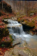 spring cascade (photogg19) Tags: creek river waterfall nikon stream arkansas cascade ozark boxley ponca lostvalley d40 elitephotography