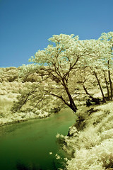Iruma River In Infrared (aeschylus18917) Tags: trees tree nature japan river landscape ir nikon scenery d70 nikond70 surreal infrared 日本 txt saitama nikkor 1870mm pxt f3545g saitamaken 1870 koma 埼玉県 iruma motokaji 赤外線 1870f3545g saitamaprefecture irumashi 入間市 元加治 高麗川 ダニエル nikkor1870f3545g 入間川 komariver danielruyle irumariver aeschylus18917 danruyle druyle ルール ダニエルルール 1870mmf3545gifdx 飯能市 hannō hannōshi nikkor1870f3545gdx