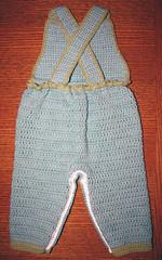 cotton overalls: turtle blue