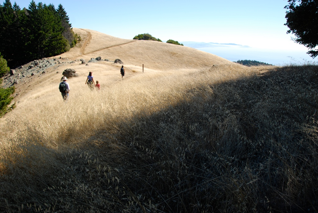 Mount Tamalpaias - Attractions/Entertainment - Mt Tamalpais, US