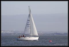 Impala (GBR7463T) (leightonian) Tags: uk island boat sailing unitedkingdom yacht isleofwight solent gb isle cowes wight iow buoyant bluesail