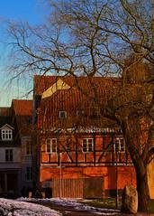 Somewhere in Svendborg (Kirsten M Lentoft) Tags: blue winter orange house tree denmark svendborg kirstenmlentoft