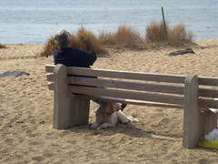 Relaxing with my buddy - 3-8-09 (Villas Girl pics) Tags: dog bay capemaypoint delawarebay