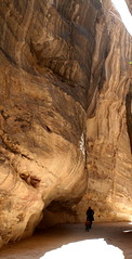 Journey to Petra (sandyseek) Tags: holiday rock sandstone petra jordan riverbed gully
