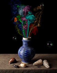 Smoke Bouquet (kevsyd) Tags: stilllife shells butterfly fly smoke snail bubbles vanitas manray westerwald