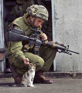 Soldier with cat