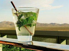 Another View of the Mojito from the Villaggio Terrace from Yesterday's Post (merriewells) Tags: lasvegas drinks mojito blueskies cocktails mbpictures villaggiobar