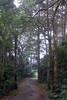DSC06712 (Schinke) Tags: brazil brasil photo foto sony natureza harry estrada neblina danilo teresopolis a700 schinke araquem