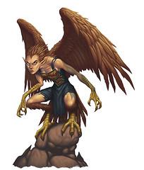 Shreiking Harpy