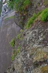 瞰望岩から見下ろす
