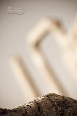 Ghosts From The Past... (SonOfJordan) Tags: old light sky blur history stone canon eos 50mm ancient mood bokeh pillar amman jordan column f18 past xsi  450d  samawi sonofjordan shadisamawi  wwwshadisamawicom