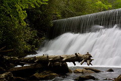 Log and Dam (David Hopkins Photography) Tags: longexposure waterfall nc log rocks whitewater dam northcarolina pisgahnationalforest hendersoncounty millsriver northmillsriver hendersonvillereservoirdam davidhopkinsphotography ncpedia