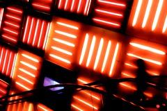 Some Colors (MeckiMac) Tags: delete10 delete9 delete5 delete2 delete6 delete7 save3 delete8 delete3 delete delete4 save save2 save4 save5
