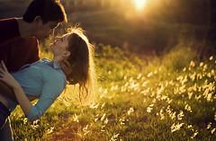 Juliana & Yuuji (Nilton Ramos Quoirin) Tags: brazil love boyfriend paran brasil backlight contraluz engagement girlfriend couple amor romance flare pr casal namorados fozdoiguau noivos yuujifukui julianazamodzki