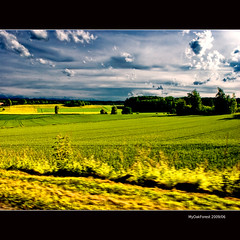 Driving by or Yellow Fields (MyOakForest) Tags: alps yellow felder driveby gelb fields alpen vorbeifahren abigfave theunforgettablepictures
