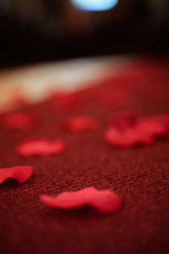 Carpet and Petal