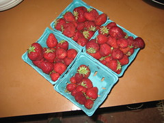 20090624_strawberries_001