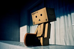 Danbo (Saarss) Tags: japan toy sunday danbo amazoncomjp