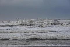 00139267 (wolfgangkaehler) Tags: sea usa landscape coast nationalpark surf unitedstates wind unitedstatesofamerica wave olympicpeninsula unescoworldheritagesite worldheritagesite northamerica washingtonstate olympicnationalpark kalaloch northamerican stormwatching roughocean