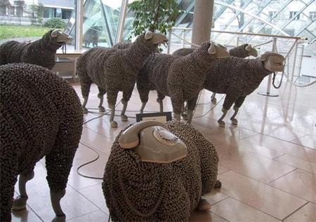05_sheep07