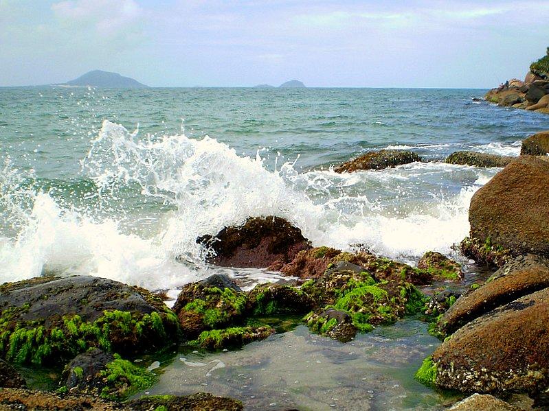 Dança das ondas 2