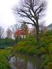 HDR-Ueno Pond (Endareth) Tags: japan ueno hdr 5xp