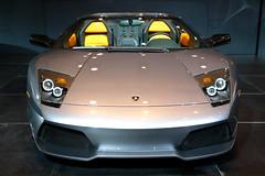 Lamborghini Murcielago (front view)