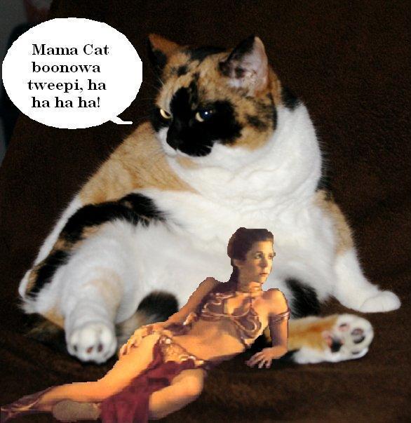 Jabba Mama Cat