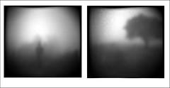 niebla (martintin tin) Tags: niebla lugar figura