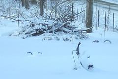030109-08 Snow Kids Bikes