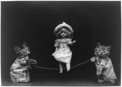 [フリー画像] [動物写真] [哺乳類] [ネコ科] [猫/ネコ] [子猫] [人形]     [フリー素材]